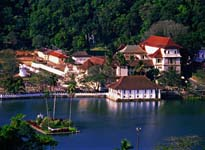 Honeymoon Tour Packages in Sri Lanka